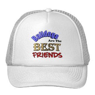 Los dogos son el gorra de los mejores amigos