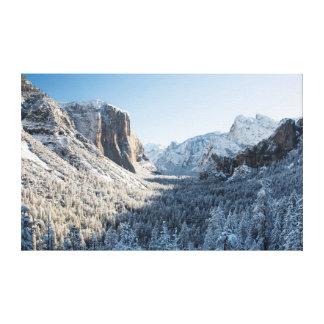 Los E.E.U.U., California, parque nacional 2 de Lona Estirada Galerías