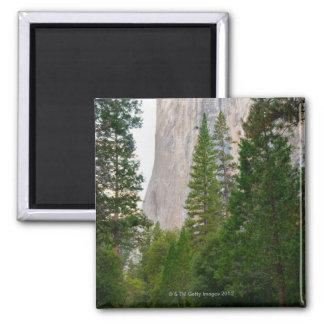 Los E.E.U.U., California, parque nacional de Imán Cuadrado