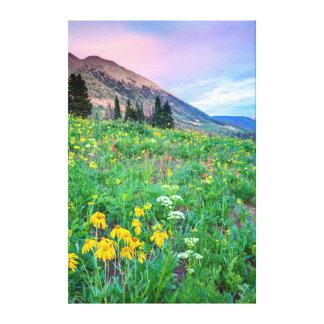 Los E.E.U.U., Colorado, mota con cresta. Paisaje 2 Lona Estirada Galerias