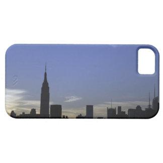 LOS E.E.U.U. iPhone 5 CARCASA