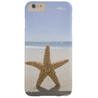 Los E.E.U.U., Massachusetts, Cape Cod, Nantucket, Funda Barely There iPhone 6 Plus