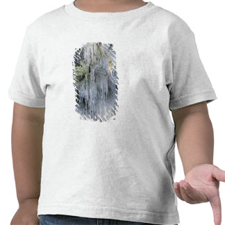 Los E.E.U.U., Oregon, curva. El hielo en pino Camisetas