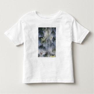 Los E.E.U.U., Oregon, curva. El hielo en pino Camiseta De Bebé