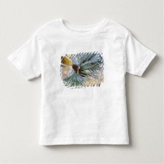 Los E.E.U.U., Oregon, curva. Las agujas del pino Camiseta De Bebé