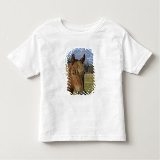 Los E.E.U.U., Oregon, hermanas, opinión tres Camiseta
