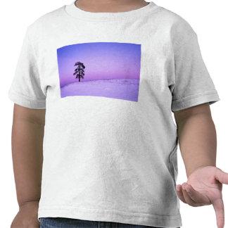 Los E.E.U.U., Washington, el condado de Spokane, Camisetas
