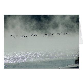 Los gansos toman la tarjeta del vuelo