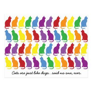 Los gatos son apenas como la postal de los perros