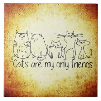 Los gatos son mis solamente amigos azulejo cuadrado grande
