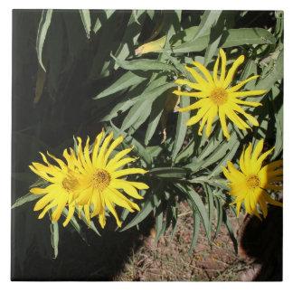 """Los hierbas del en MI de Flores """"florecen en mis Azulejo Cuadrado Grande"""