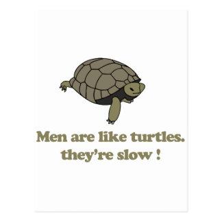 Los hombres son como tortugas ellos son lentos tarjetas postales