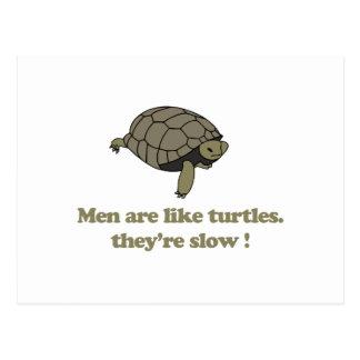 Los hombres son como tortugas, ellos son lentos tarjetas postales
