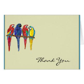 Los loros tropicales le agradecen tarjeta