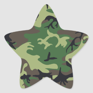 Los militares camuflan al pegatina