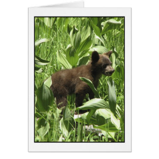 Los osos dejados sean tarjeta de los osos