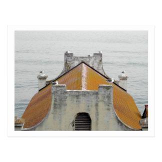 Los pájaros de Alcatraz Postal