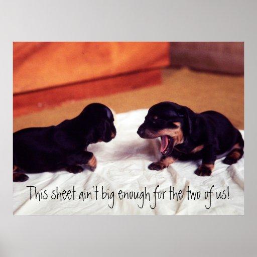 los perritos esta hoja no son bastante grande post posters