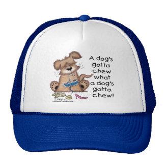 Los perros consiguieron masticar gorra