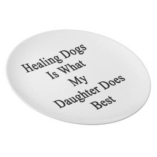Los perros curativos son lo que hace mi hija mejor plato de comida