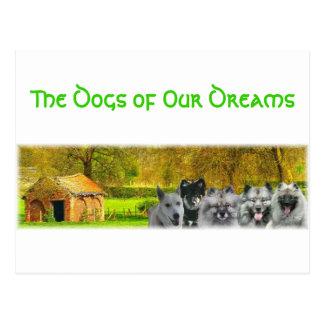 Los perros de nuestros sueños postal