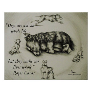 Los perros hacen nuestras vidas enteras - poster