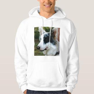 ¡Los perros más elegantes de Collies~World de la Jersey Encapuchado