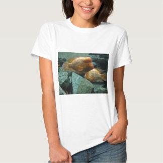 Los pescados a pescado de Momma de la cara Camiseta