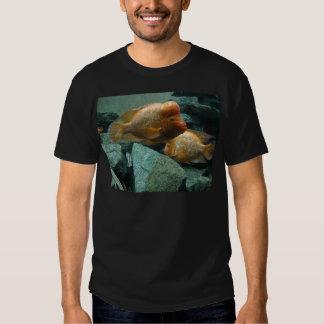 Los pescados a pescado de Momma de la cara Camisetas