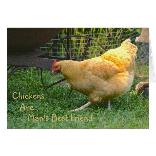 Los pollos son tarjeta de nota del mejor amigo del