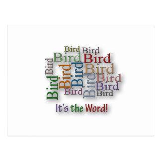 Los refranes divertidos lo citan - pájaro - son la postal