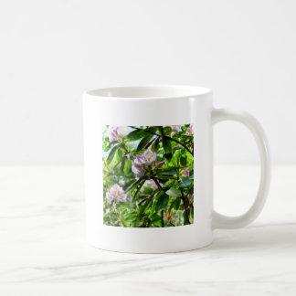 Los rododendros están en la floración taza de café