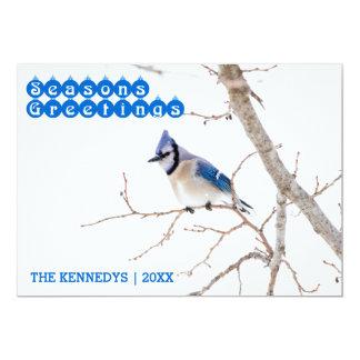 Los saludos de la estación - arrendajo azul que invitación 12,7 x 17,8 cm