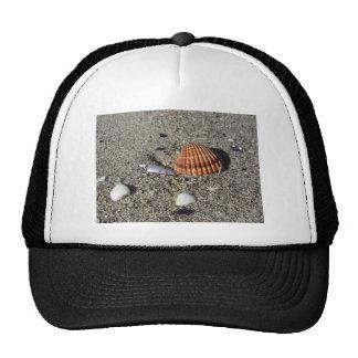 Los Seashells el verano de la arena varan la Gorro