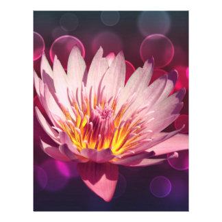 Lotus Tarjetones