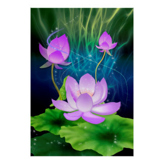 Lotus violeta póster