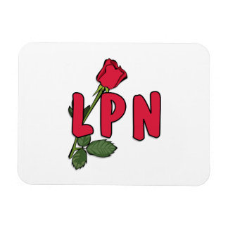 LPN subió Imanes Rectangulares
