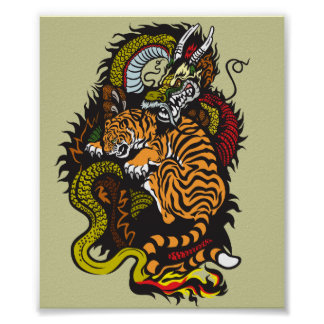 lucha del dragón y del tigre póster