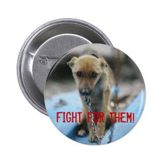 ¡Lucha para ellos! Pins