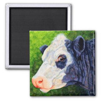 Lulu - vaca negra de Baldie Imán