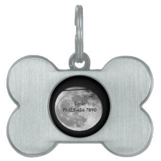 ¡Luna estupenda con el paso/personalizable del Placa Para Mascotas