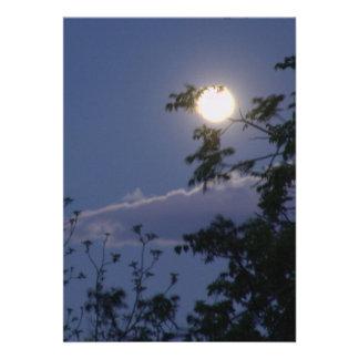 Luna Llena y ramas Anuncio Personalizado
