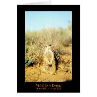 Mabili - tarjeta de las leyendas