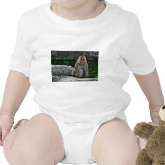 Macaque japonés traje de bebé