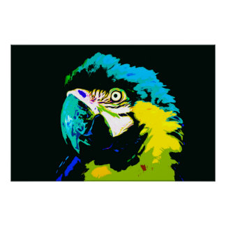 Macaw 05 - Arte de Digitaces