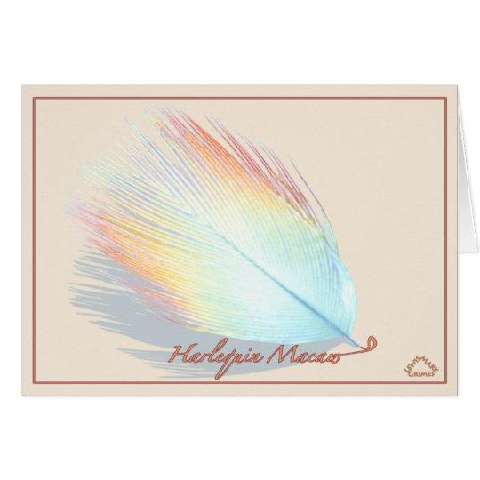 Macaw del Harlequin - tarjeta