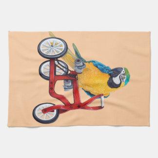 Macaw del loro en la bici del triciclo paño de cocina