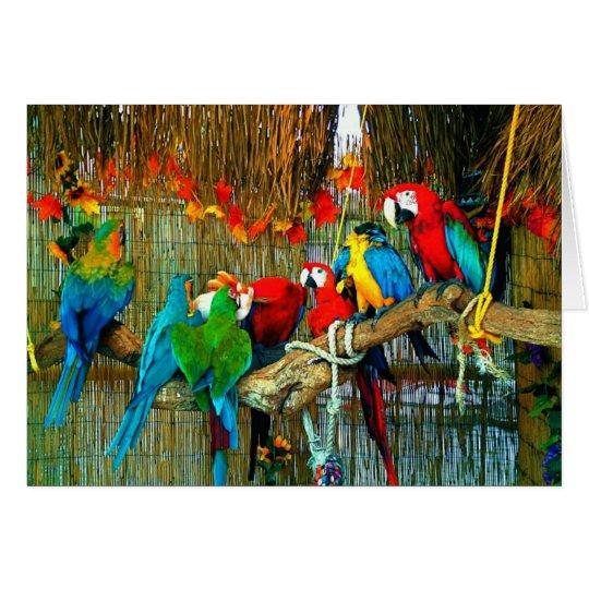 Macaws en desfile tarjeta de felicitación
