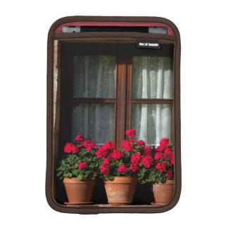Macetas de la ventana en pueblo fundas para iPad mini
