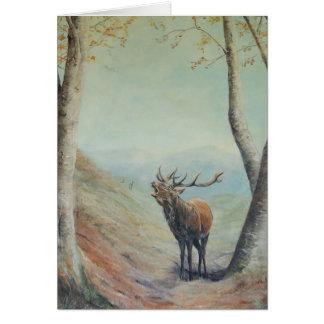Macho del ciervo común que grita la tarjeta del